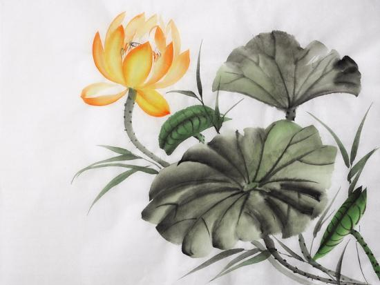 Watercolor Painting Of Yellow Lotus Flower Art Print By Surovtseva