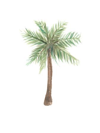graphic relating to Palm Tree Printable named Watercolor Palm Tree Giclee Print by way of Jetty Printables