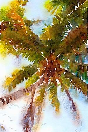 https://imgc.artprintimages.com/img/print/watercolor-palms-ii_u-l-pwiyc10.jpg?p=0