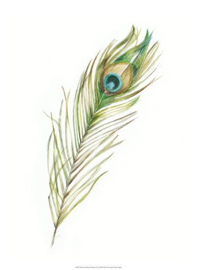 Watercolor Peacock Feather II-Ethan Harper-Giclee Print