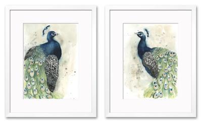 Watercolor Peacock Set