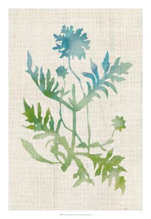 https://imgc.artprintimages.com/img/print/watercolor-plants-iii_u-l-f8fb260.jpg?p=0