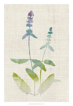 https://imgc.artprintimages.com/img/print/watercolor-plants-iv_u-l-f8fb270.jpg?p=0