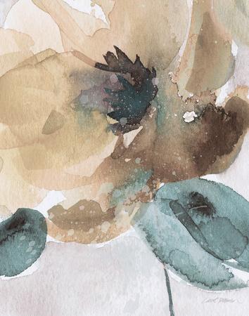https://imgc.artprintimages.com/img/print/watercolor-poppy-ii_u-l-f8908f0.jpg?p=0