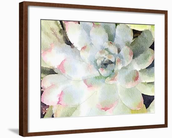 Watercolor Succulent-Nola James-Framed Art Print