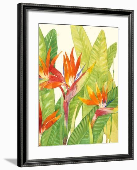 Watercolor Tropical Flowers IV-Tim OToole-Framed Art Print