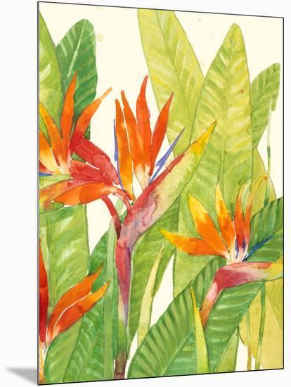 Watercolor Tropical Flowers IV-Tim OToole-Mounted Art Print