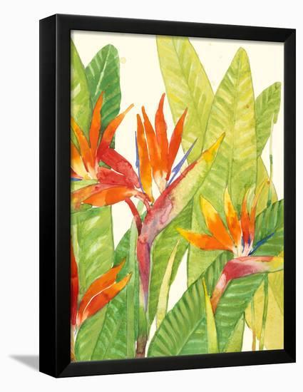 Watercolor Tropical Flowers IV-Tim OToole-Framed Stretched Canvas Print
