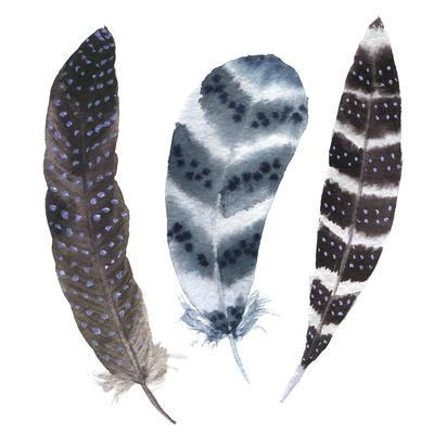 https://imgc.artprintimages.com/img/print/watercolor-vibrant-striped-feather-set-boho-feather-style-illustration-feather-isolated-on-white_u-l-q1bj11y0.jpg?p=0