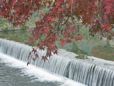 Waterfall, Arashiyama, Kyoto, Japan-Rob Tilley-Photographic Print