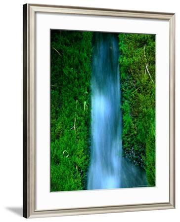 Waterfall Cascading Through Foliage, Plitvice Lakes National Park, Zadar, Croatia-Martin Moos-Framed Photographic Print