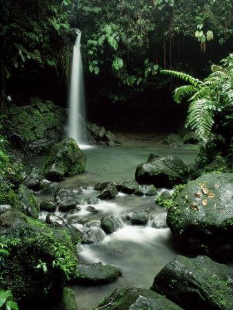 https://imgc.artprintimages.com/img/print/waterfall-flowing-into-the-emerald-pool-dominica-west-indies-central-america_u-l-p2qbtn0.jpg?p=0