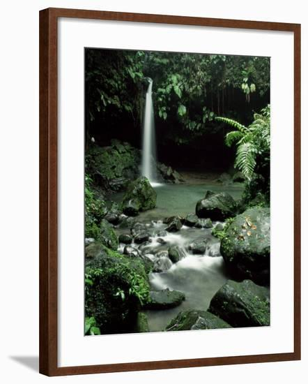 Waterfall Flowing into the Emerald Pool, Dominica, West Indies, Central America-James Gritz-Framed Photographic Print