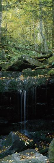 Waterfall in a Forest, Great Smoky Mountains National Park, North Carolina, USA--Photographic Print
