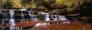 Waterfall in a Forest, North Creek, Zion National Park, Utah, USA