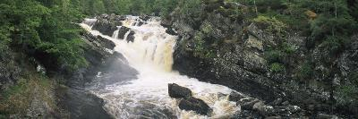 Waterfall in a Forest, Rogie Falls, Black Water River, Inverness, Ross and Cromarty--Photographic Print