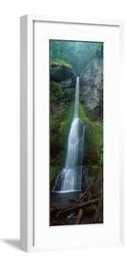 Waterfall in Olympic National Rainforest