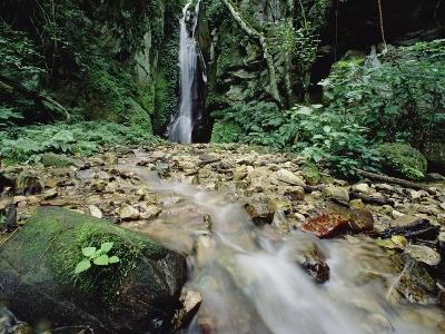 Waterfall on Gombe Stream in Low Montane Tropical Rainforest, Tanzania-Gerry Ellis-Photographic Print