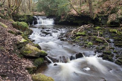 Waterfall on Harden Beck in Goitstock Wood, Cullingworth, Yorkshire, England, UK-Mark Sunderland-Photographic Print
