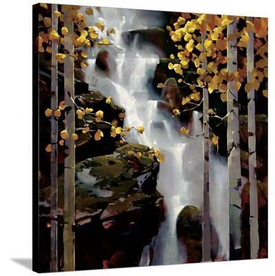 Waterfall-Michael O'Toole-Stretched Canvas Print