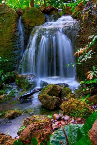 Waterfall-Patti Sullivan Schmidt-Photographic Print