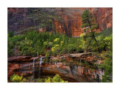 Waterfalls at Emerald Pools, Zion National Park, Utah-Tim Fitzharris-Art Print