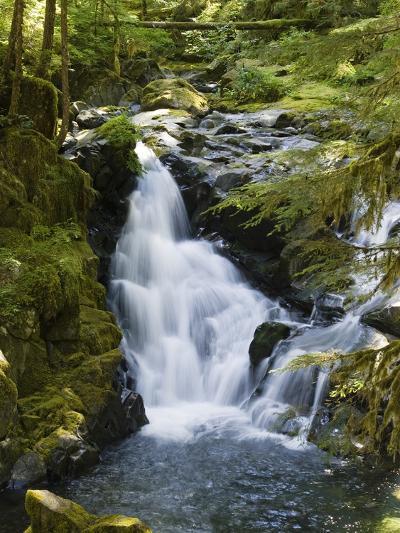 Waterfalls of Sol Duc River, Olympic National Park, Washington-Konrad Wothe-Photographic Print