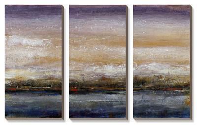 Waterflow I-Tim O'toole-Canvas Art Set