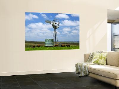 Watering Cattle Beneath Windmill on Darling Downs, Southern Queensland-Philip Game-Wall Mural