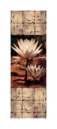 https://imgc.artprintimages.com/img/print/waterlily-panel-ii_u-l-f7m6vo0.jpg?p=0
