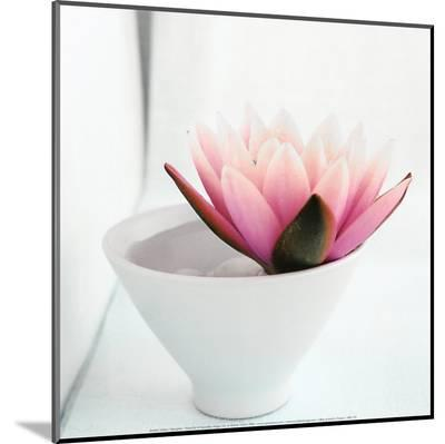 Waterlily-Amelie Vuillon-Mounted Print