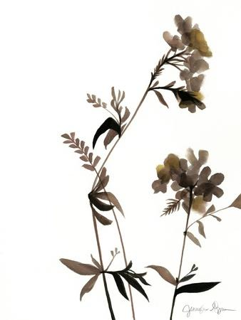 https://imgc.artprintimages.com/img/print/watermark-wildflowers-ii_u-l-p8llv30.jpg?p=0
