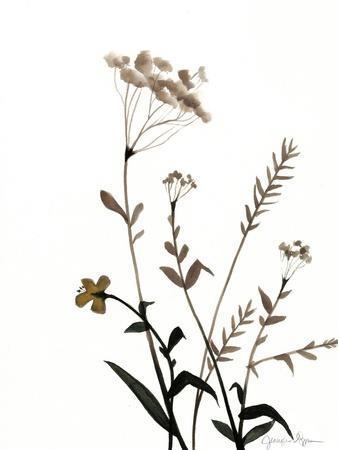 https://imgc.artprintimages.com/img/print/watermark-wildflowers-x_u-l-p8lnwa0.jpg?p=0