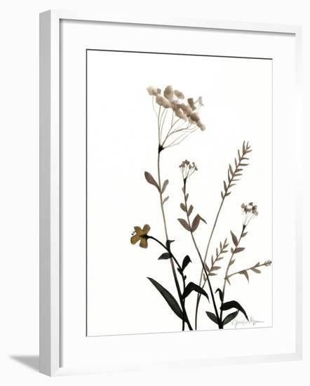 Watermark Wildflowers X-Jennifer Goldberger-Framed Art Print
