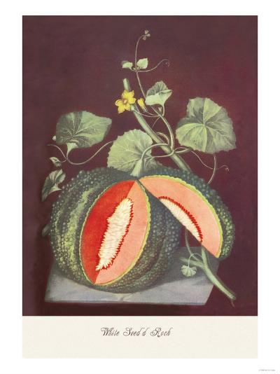 Watermelon--Art Print