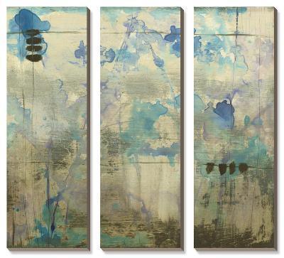 Waterspace-Jennifer Goldberger-Canvas Art Set