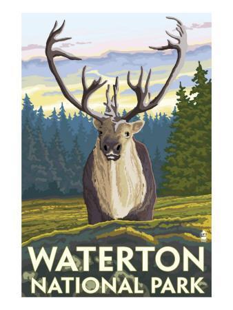 https://imgc.artprintimages.com/img/print/waterton-national-park-canada-caribou_u-l-q1gove30.jpg?p=0