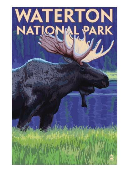 Waterton National Park, Canada - Moose at Night-Lantern Press-Art Print