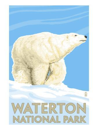 https://imgc.artprintimages.com/img/print/waterton-national-park-canada-polar-bear_u-l-q1govg70.jpg?p=0