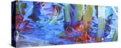 Waterway Prism-Suzanne Silk-Stretched Canvas Print