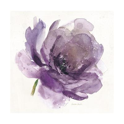https://imgc.artprintimages.com/img/print/watery-plum-bloom-1_u-l-pn7sok0.jpg?p=0