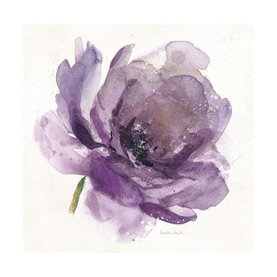 https://imgc.artprintimages.com/img/print/watery-plum-bloom-1_u-l-q1bjw1h0.jpg?p=0