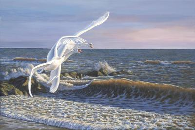 Wave Skimmers-Bruce Dumas-Giclee Print