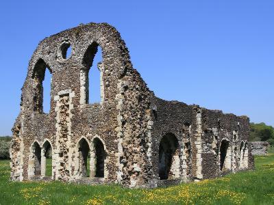 Waverley Abbey, Near Farnham, Surrey, England, United Kingdom, Europe-Rolf Richardson-Photographic Print