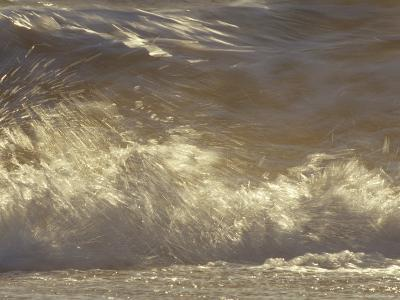 Waves Breaking Onto a Beach Turn Golden at Sunset, Coorong National Park, Australia-Jason Edwards-Photographic Print