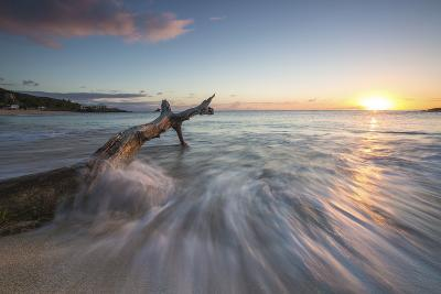 Waves on a Tree Trunk on the Beach Framed by the Caribbean Sunset, Hawksbill Bay, Antigua-Roberto Moiola-Photographic Print