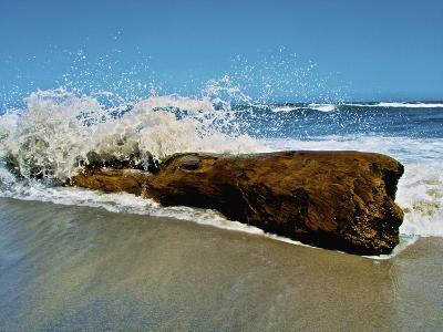 Waves Splashing over Driftwood on Beach-Stocktrek Images-Photographic Print