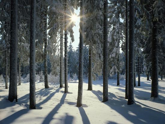 Way, Meadows, Mountains-Thonig-Photographic Print