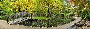 Alfred Nicholas Gardens by Wayne Bradbury