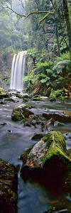Hopetoun Falls Vert by Wayne Bradbury